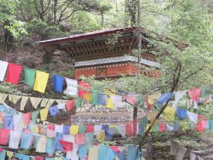Forest-stupa2